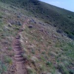 Single-track section from Willow Creek Pass to Sheep Rock.